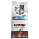 FORZA 10 MEDIUM ADULT MAINTENANCE AGNELLO & RISO  KG 12.5 offer