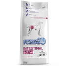 FORZA 10 INTESTINAL ACTIVE CANE KG.10 offerta