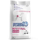 FORZA 10 INTESTINAL ACTIVE CANE KG.4 offerta