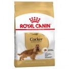 ROYAL CANIN COCKER ADULT kG 12 offerta