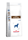 ROYAL CANIN GASTRO INTESTINAL CANE KG 2