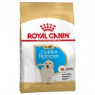 ROYAL CANIN GOLDEN RETRIEVER PUPPY KG 12